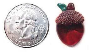 Acorn Quarter Size