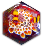 Honeycomb & Bees HEXAGON Shaped 3D Glass PW Button