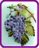 CORALENE GRAPES Fused Photo Decal on Purple Glass Button