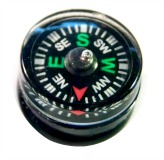 COMPASS Small MOVEABLE Metal & Plastic on Glass Base - Choice of Any Color!
