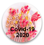 COVID-19 Verbal 2020 Commemorative Glass Paperweight Button