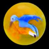 Dimi Blue Bird Front