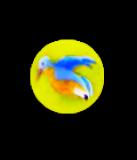 Diminutive BLUE BIRD Glass Paperweight Button