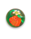Diminutive STRAWBERRY w/Blossom - Black or Green Glass PW Button