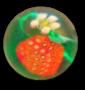 Dimi Strawberry Gallery 90