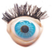 Eye Gallery 100