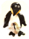 Penguin Chick Gallery