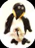Penguin Chick Gllery 95