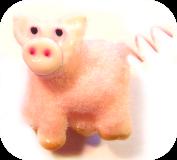 PIG Gallery