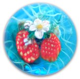 Strawberries on Flowering Vine Glass PW Button Scene