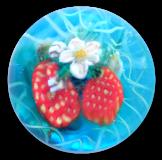 Strawberries on Flowering Vine Glass PW Button Scene